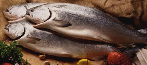 Evde kalan balıklar nasıl saklanmalı?