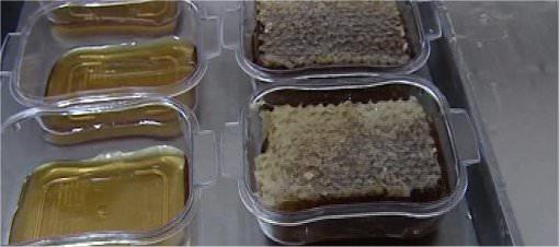 Türkiye'de bu kadar bal üretiliyor mu?