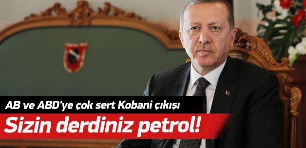 Cumhurbaşkanı Erdoğan: AB ve ABD'nin derdi petrol