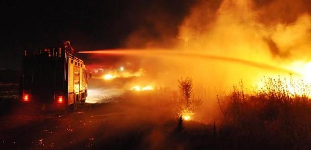 Balıkesir'de ağaçlandırma sahasında yangın