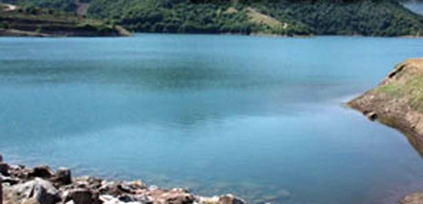 Baraj kapağı açık bırakıldı binlerce balık telef oldu