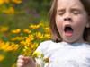 Yazın alerjik hastalıklar artıyor!